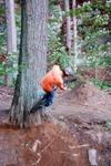 Sasaha_on_tree